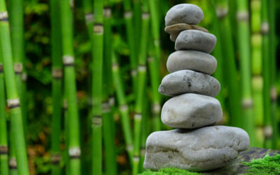 It's all about balance: Using an offset account to your advantage